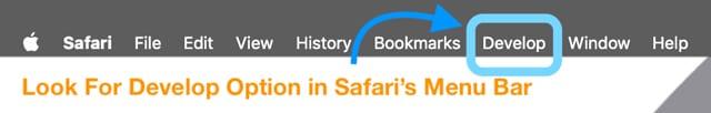 Option de développement dans le menu Safari sur Mac